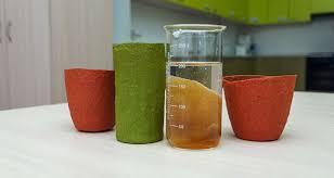 Scientists in Samara invent crunchy dishes